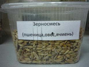 Зерносмесь (ячмень, пшеница, овес)